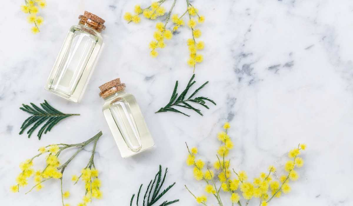 What Is The Difference Between Essential Oils and Fragrance Oils