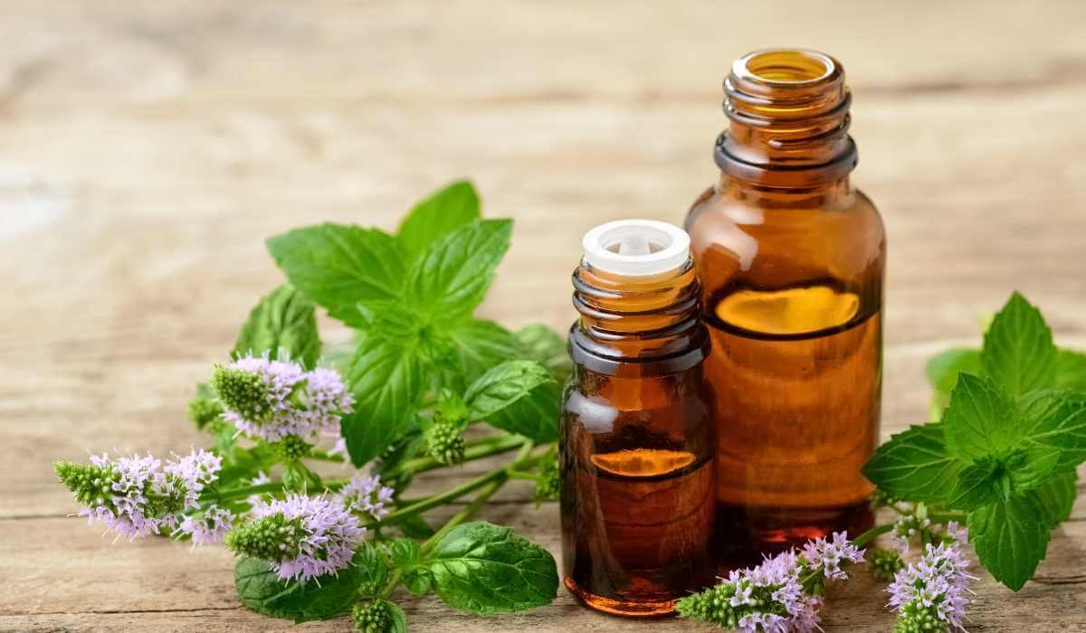 6 Best Essential Oils For Itchy Skin Rash That Relieves & Soothes