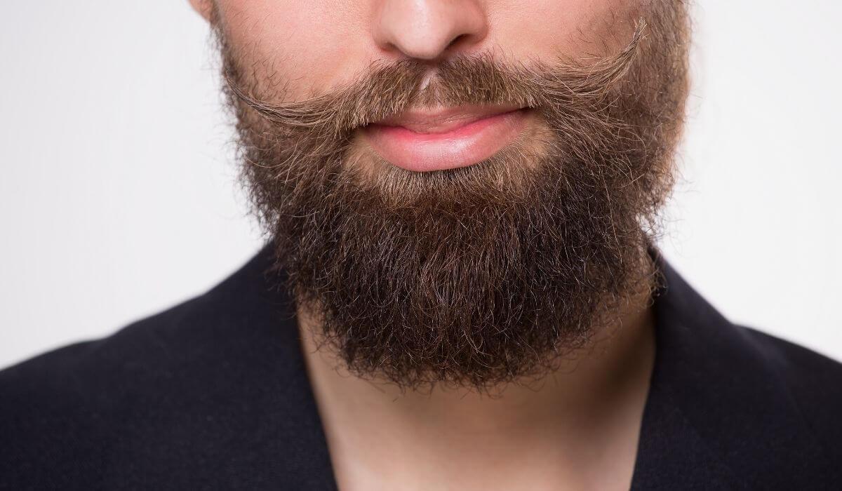 9 Best Carrier Oils For Beard Oil (Review)